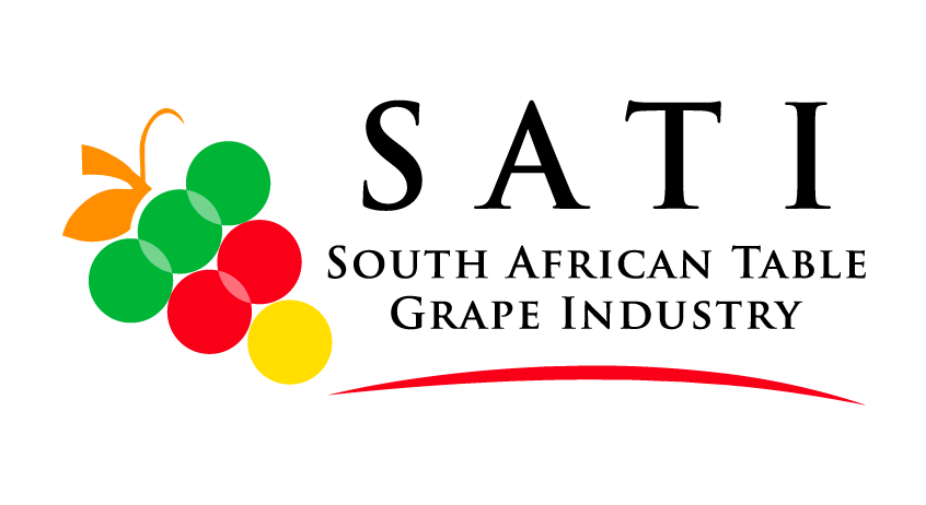 Sati Logo Team