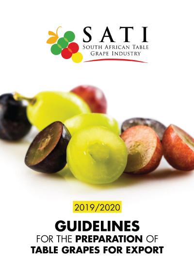 SATI Guidelines Booklet 2019